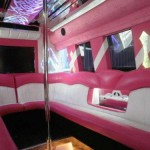 party-busses-150x150 LIMO SERVICE LOS ANGELES, Limousine Service LA, Limo Rental Los Angeles