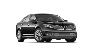 Chrysler-300-Car-Service-463x273.dm_.edit_kyyJTr-3-300x144 Limo Fleet